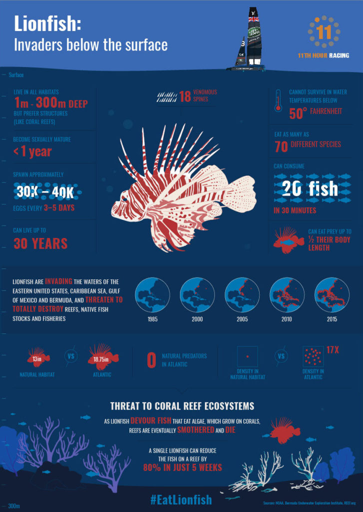 Lionfish-Facts-Infographic-Design-r5 JS Edits