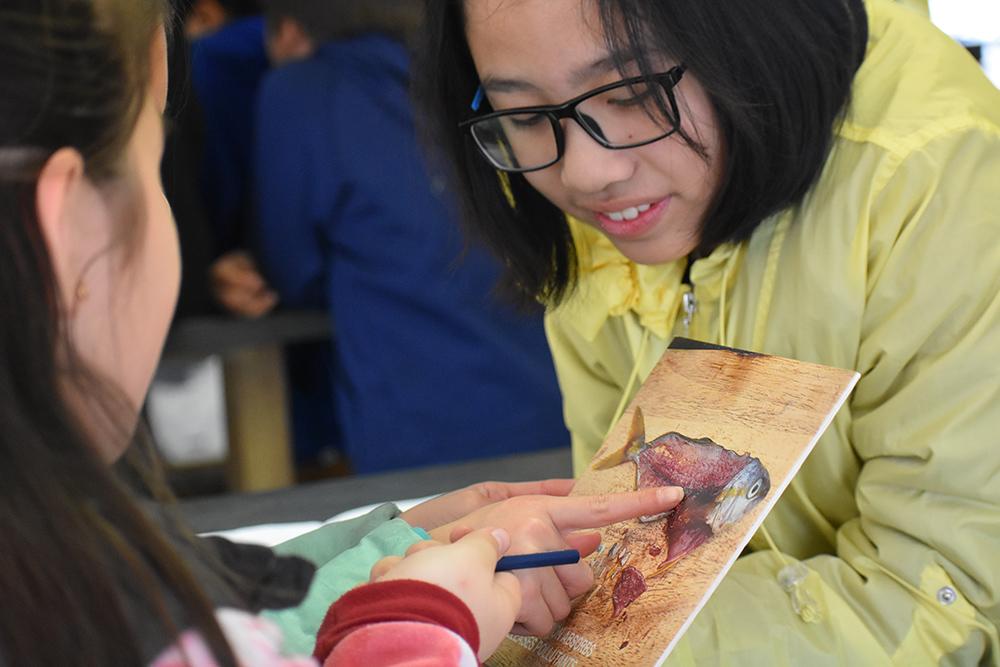 Treasure Island Sailing Center, San Francisco, California, Sailing, Community Sailing, lesson plans, STEM