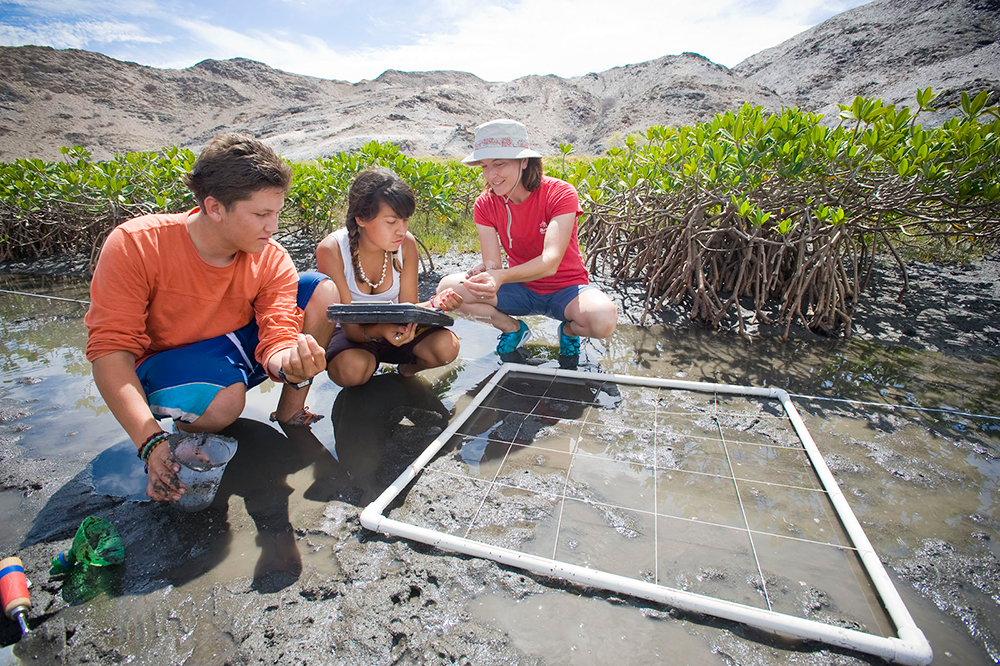 Field research. Photo credit: Ocean Discovery Institute