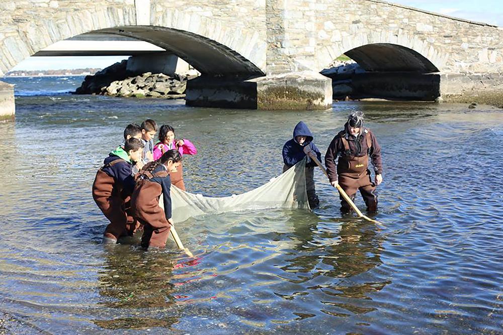 Save The Bay field studies program. Photo credit: Save The Bay