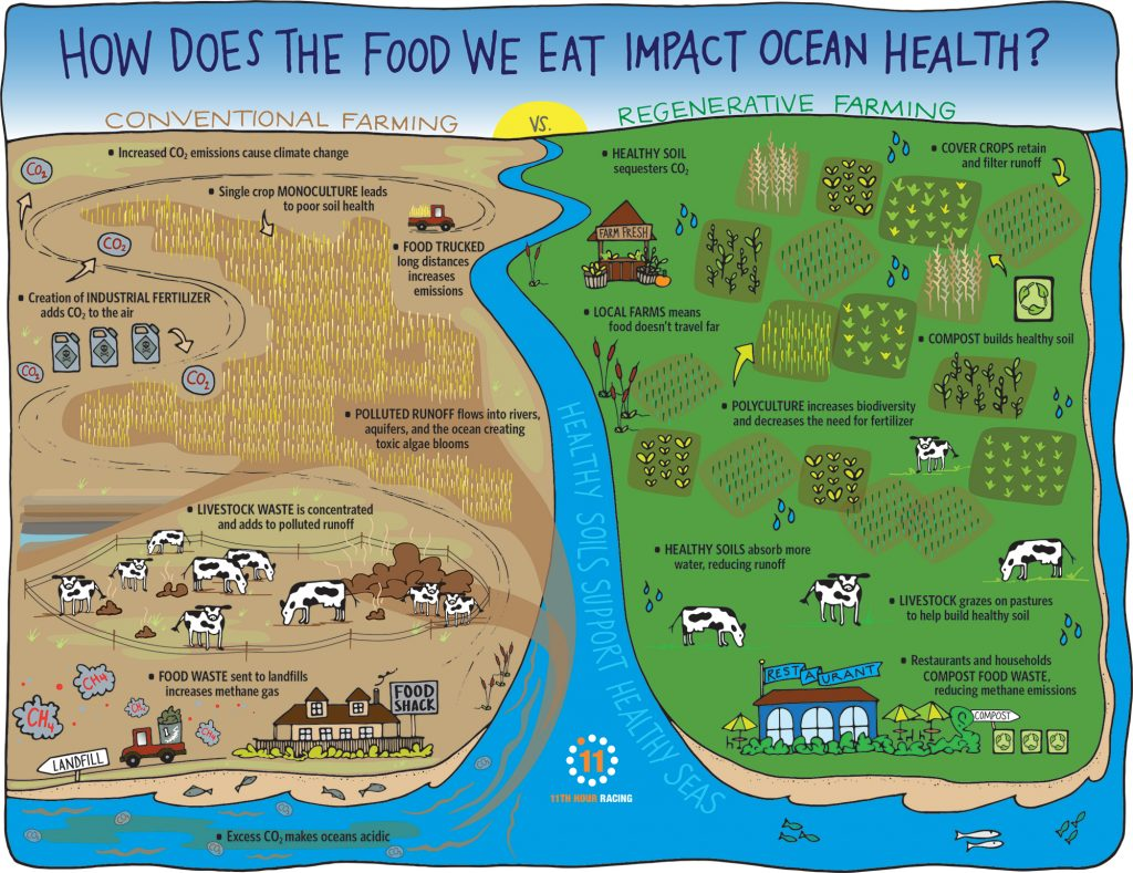 Regenerative Farming Infographic, Sustainable Farming, Healthy soils, healthy seas, composting for the ocean, composting good for ocean