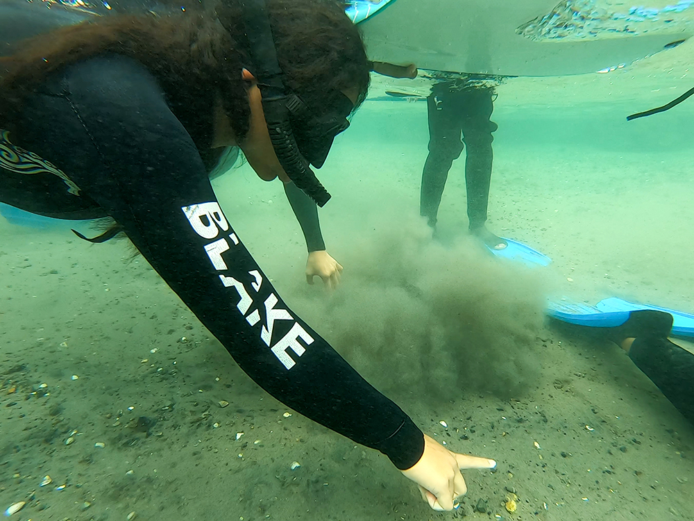 BLAKE Explorers, snorkeling in marine reserves and estuaries. Credit: BLAKE